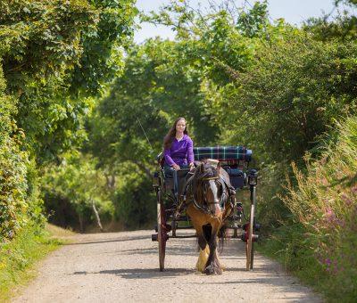 Horse Riding at Sark